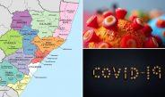 KwaZulu- Natal's Covid-19 Status